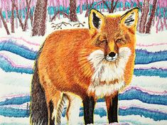 Drawing by Suzanne Berton (Canada) Paper Animals, Environmental Art, Red Fox, Conceptual Art, Contemporary Paintings, Watercolor Paper, Conservation, Woods, Original Art