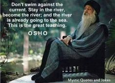 """""""Don't swim against the current. Stay in the river, become the river; and the river is already going to the sea. This is the great teaching."""" - Osho"""