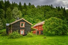 In the foliage by Knut Trondsen on Norway, Greenery, Cabin, Country, House Styles, Pictures, Home Decor, Photos, Homemade Home Decor