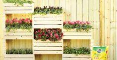 How to Make a Vertical Garden Wall