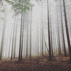 12. Stunden Wandern im Räuberland - wunderbar mystisch