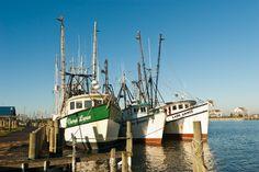 Fishing boats at Chincoteague Island, Virginia.