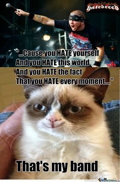 What Breed Is Grumpy Cat? Hatebreed :-D by jerry.holesh - Meme Center #whycatmeow Find out at - Catsincare.com!
