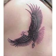 tn_Eagle_tattoo_02.jpg