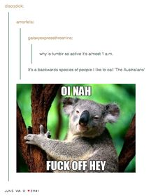 """And """"nightblogging"""": 
