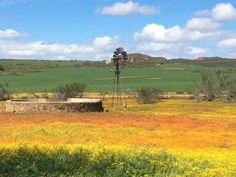 Namakwaland