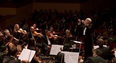 "Arcangelo Corelli: Concerto Grosso in G minor, Op.6 No.8 ""Christmas Concerto"" – Ton Koopman (HD 1080p) • http://facesofclassicalmusic.blogspot.gr/2015/02/arcangelo-corelli-concerto-grosso-in-g.html"