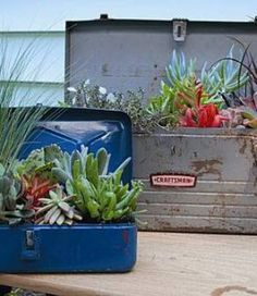 Planting Succulents in Re-used Containers this would be good for an apartment patio!