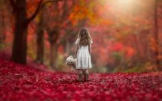 Autumn Leaves Girl With Teddy Bear HD Wallpaper