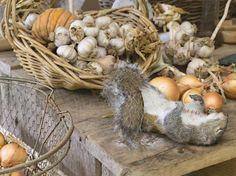 © Lucas Foglia, série « A Natural Order », Harvest with Squirrel, North Carolina 2007