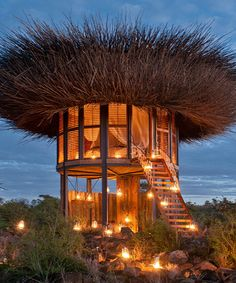 Charming Bird Nest Hotel Room Lets Safari Guests Sleep Above The Trees Amazing Pictures