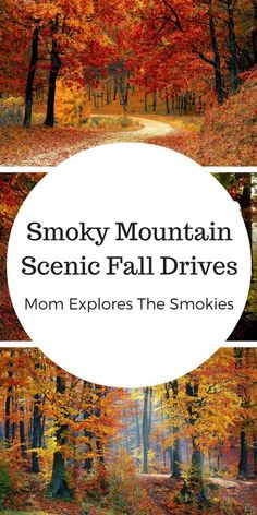 Mountains Scenic Fall Drives These amazingly scenic driving routes in the Smoky Mountains, bring the wondrous beauty of fall to life.These amazingly scenic driving routes in the Smoky Mountains, bring the wondrous beauty of fall to life. Fall Vacations, Mountain Vacations, Family Vacation Destinations, Travel Destinations, Vacation Trips, Vacation Spots, Mountains In Tennessee, Great Smoky Mountains, North Carolina Mountains