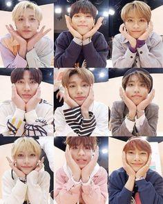 20160326 - Stray Kids on Idol Room Stray Kids Chan, Felix Stray Kids, K Pop, Sung Lee, Rapper, Kid Memes, Wattpad, Kids Wallpaper, Lee Know