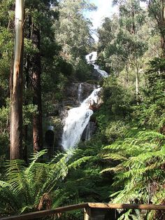 Picture from Beautiful Marysville, Victoria
