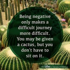 Being negative only makes a difficult journey more difficult.  You may be given a cactus, but you don't have to sit on it. How true!