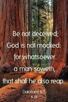 Galatians 6:7 KJV                                                                                                                                                                                 More