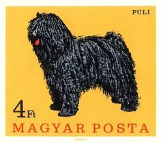 1967 Hungary Puli Dog Postage Stamp by Retro Graphics Hungarian Dog, Puli Dog, Going Postal, Vintage Stamps, Dog Show, Mellow Yellow, Yellow Black, Stamp Collecting, My Stamp