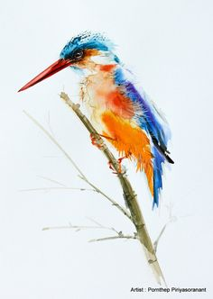 Kingfisher bird Bird watercolor painting Bird by OrientalArt2029