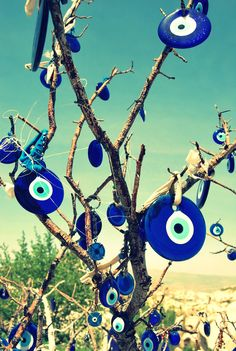 The evil eye, or nazar, is an amulet that protects against bad luck, commonly found throughout the Middle and Near East. Tying them to a tree ensures good luck and protection. #NYFW