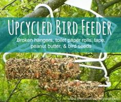 Upcycled Bird Feeder: Use broken hangers, toilet paper rolls, expired (or not) peanut butter, and bird seed.