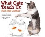 Buy Animals Calendars 2013 online at Megacalendars com Shop our large selection of Animals Calendars An animal calendar makes a great gift for animal lovers.