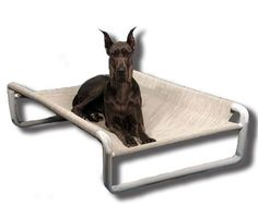 Rover Company Elevated Dog Bed, 36 by 60-Inch, Birch Forest *** You can get additional details at the image link.
