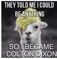#Coltondixon