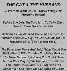 The Cat & The Husband- Funny Story !!!
