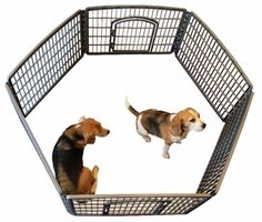 Plastic playpen for puppies, small dogs or kittensAdditional packs can be… Dog Playpen Indoor, Gumtree South Africa, Pet Accessories, Small Dogs, Dog Bowls, Dog Love, Dog Training, Best Dogs, Baby Animals