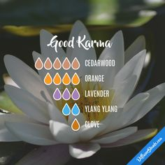 Good Karma - Essential Oil Diffuser Blend I bet this would make a great perfume. Oils For Energy, Sante Bio, Cedarwood Oil, Essential Oil Diffuser Blends, Diffuser Recipes, Aromatherapy Oils, Doterra Essential Oils, Cedarwood Essential Oil Uses, Clove Essential Oil