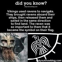 Ravens on the Viking flag