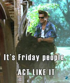 #Friday #Ace #Ventura