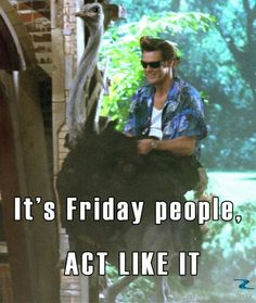 #Friday #Ace #Ventura Haha Funny, Funny Pics, Funny Pictures, Hilarious Memes, Funny Stuff, Movie Quotes, Book Quotes, Funny Quotes, True Quotes