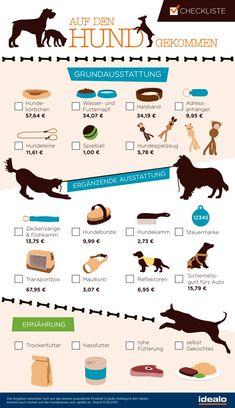 Erstausstattung für den Hund – Checkliste für Hundehalter