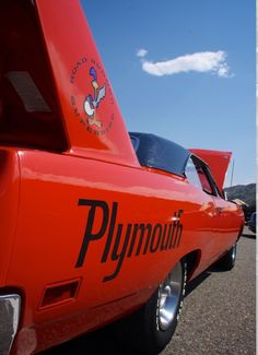 Drive and hang your clothes out to dry! Sweet wing on the Superbird.