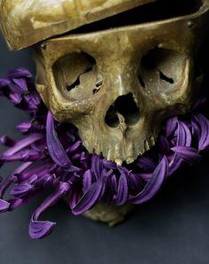 UB_Skull_16.jpg