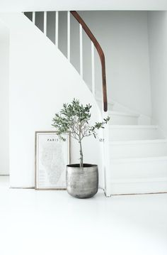 All white with a hint of natural by way of a beautiful handrail.Calming.