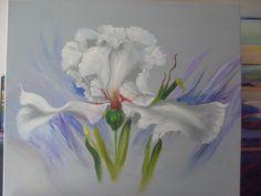 Iris ballerina ...