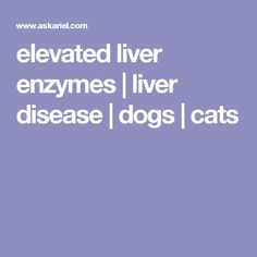 elevated liver enzymes | liver disease | dogs | cats