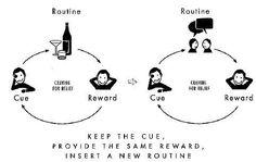the power of habit cue routine reward - Google Search