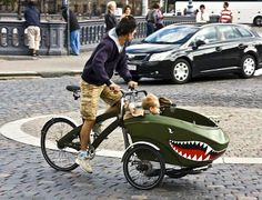 Baby carriage for dad's bicycle-what a shark!