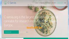 Review C-Servis - Lãi từ 2% hằng ngày - Đầu tư tối thiểu 25$ - Thanh toán tức thì Research Institute, Accounting