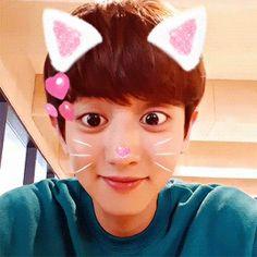 KAISOO / ❝oOps rolled into ur DMs❞ when jongin sends a message to hi… Kaisoo, Chanbaek, Kyungsoo, Park Chanyeol Exo, Kpop Exo, Cute Funny Pics, Exo Korean, Korean Men, Bigbang