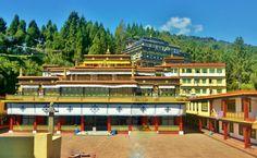 6 great monasteries of Sikkim & Darjeeling you shouldn't miss! Gangtok, Darjeeling, Buddhism, India, Mansions, House Styles, Travel, Goa India, Viajes
