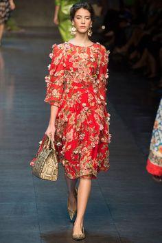 Dolce  Gabbana Spring 2014 RTW