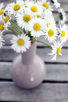 PamyLotta: Friday Flowers 19/14