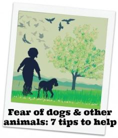 Fear of dogs: My child is frightened of animals - 7 tips to help - KiddyCharts [beta]