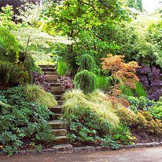 Shady slope - Shade Garden Ideas - Sunset