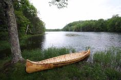 Birch bark canoe build.
