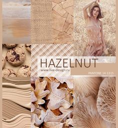 Hazelnut pantone color trend for spring 2017